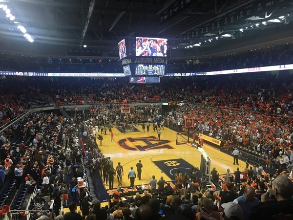 Auburn Tiger basketball is off to a great start! There is not a bad seat in the house