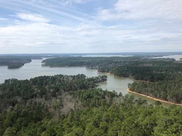 Spectacular Lake Martin views from the Smith Mountain Fire Tower