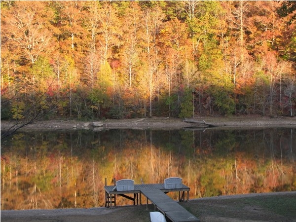 This is what fall looks like on Lake Wedowee!  Come see the beauty in Wedowee, Alabama