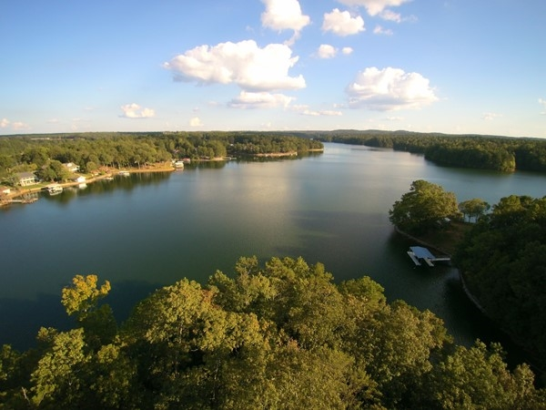Beautiful Lake Wedowee on a sunny day!  This makes your day a little brighter