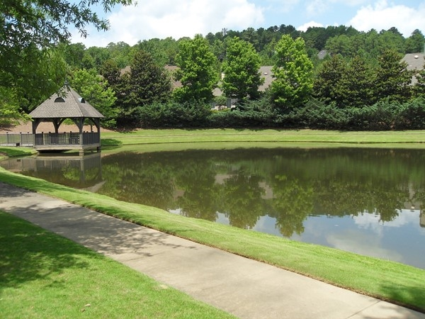 Enjoy a beautiful day by the pond