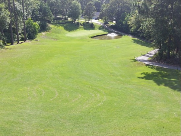 Lake Forest signature hole number 17