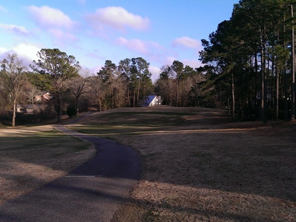 Another beautiful golf hole #6