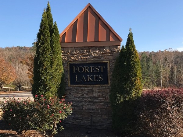 Wonderful Forest Lakes Subdivision
