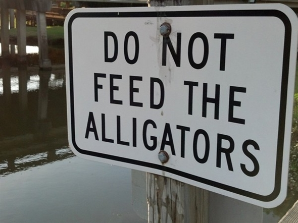 Words to live by at Daphne's D'Olive Boardwalk Park otherwise known as Gator Alley
