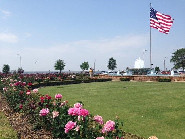 Fairhope Pier Rose garden with Mobile Bay background