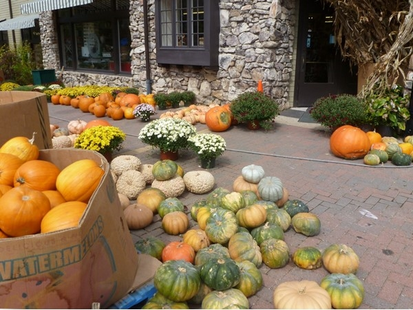 Mt. Laurel Grocery has pumpkins in a variety of colors and sizes