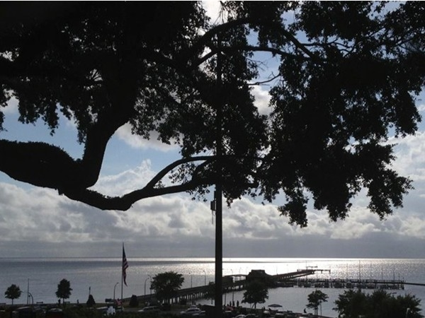 We had only lived here three days when we took my favorite Fairhope picture. Still in love!