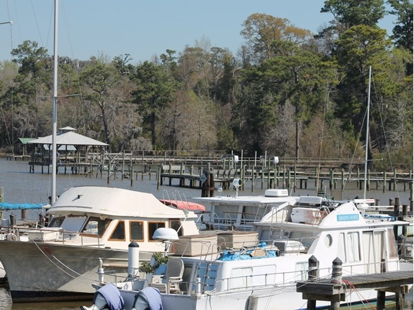 The Yacht Club is one of the hidden gems that the Lake Forest subdivision has to offer