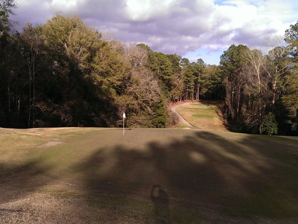 Number 9 par 3 Lake Forest