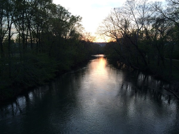 Sunset at the Hayes Nature Preserve in the Hampton Cove Area